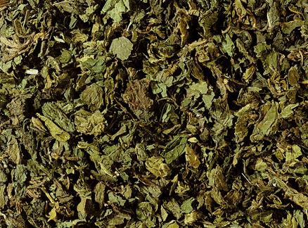 Brandnetel thee 100 gram